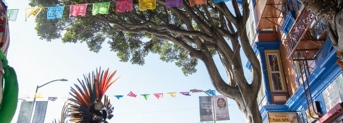 Video: 'Funeral' held for 24th Street ficus trees slated to be cut down