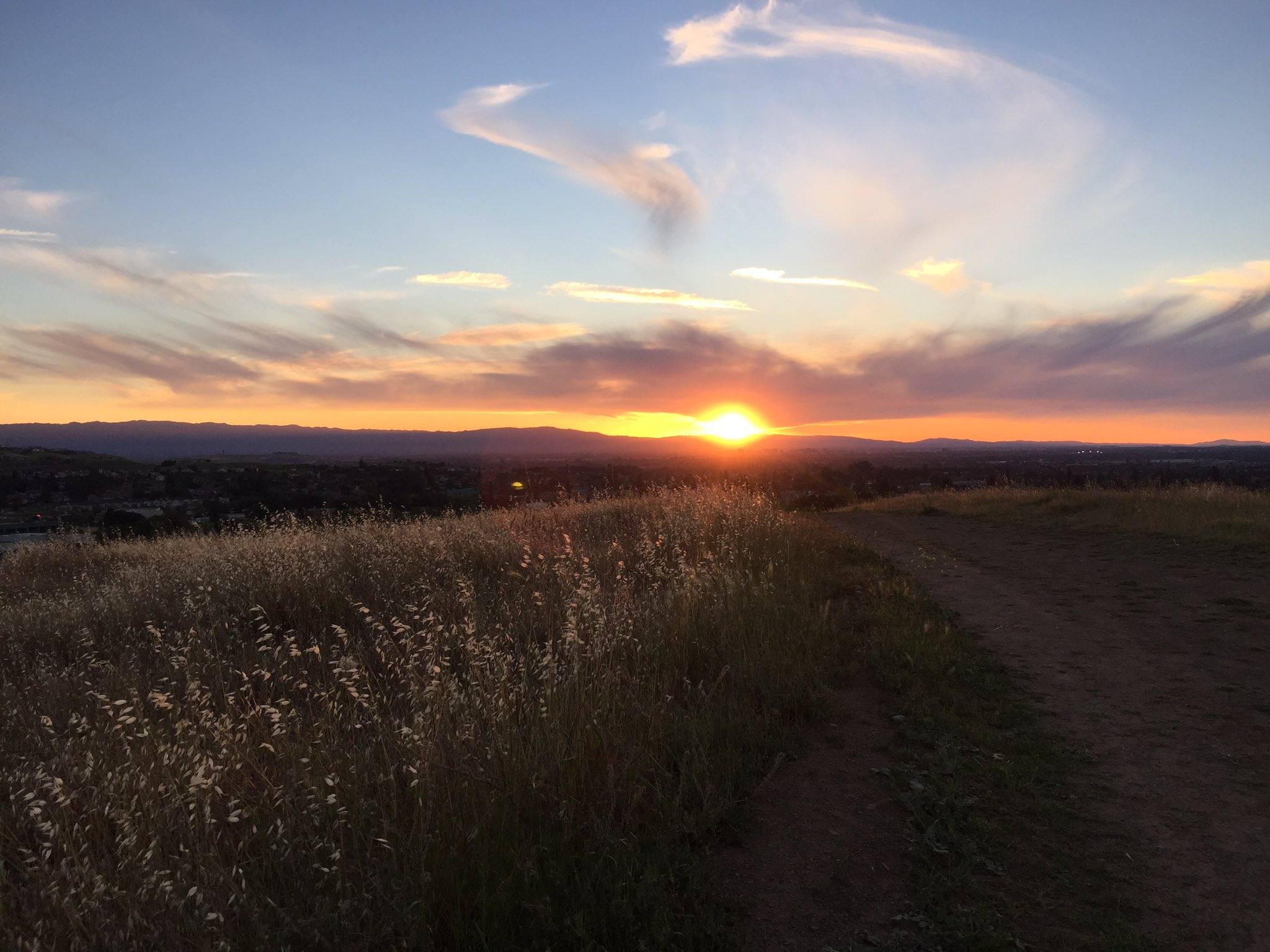 Sunset in Montgomery Hill Park