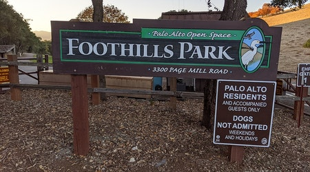 After more than 51 years, Palo Alto's Foothills Park is finally open to the public
