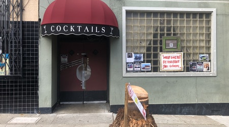 The Lone Palm cocktail bar has lost it lone palm