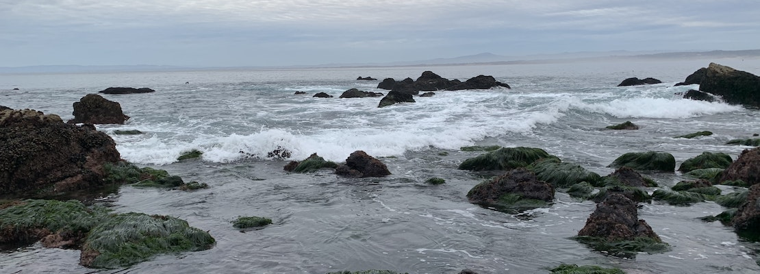 Bay Area day trips: Summertime in Monterey County