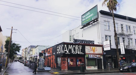 The Sycamore celebrates its 10th anniversary (on its 11th anniversary)