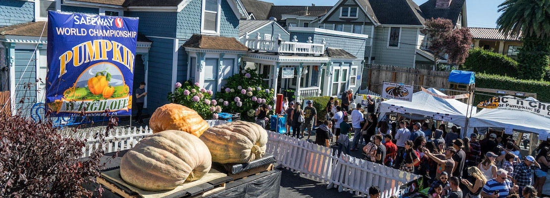 Big blow to non-profits as famous Bay Area pumpkin festival is canceled for second year