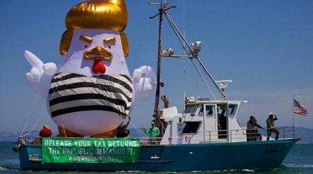 Trump chicken blimp sails to Alcatraz