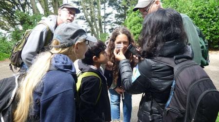 Cal Academy's Dr. Rebecca Johnson Talks Bay Area Citizen Science