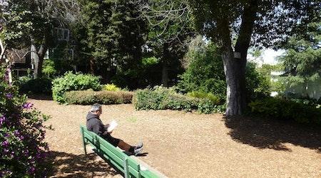 Great Explorations: Allyne Park
