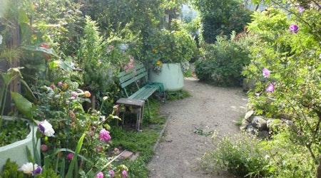 Great Explorations: Howard/Langton Mini-Park & Community Garden