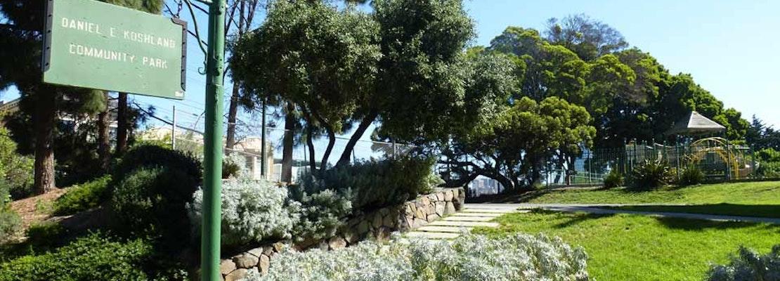 How Koshland Park Cultivated Neighborhood Support Into A Flourishing Community
