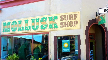 Surfing And Art Come Together At Ocean Beach's Mollusk Surf Shop