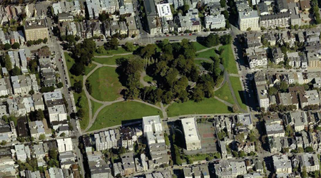 ASNA Fundraising Campaign Aims To Bring 100+ New Trees To Alamo Square