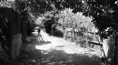 Great Explorations: The Country Lanes Of Glen Park