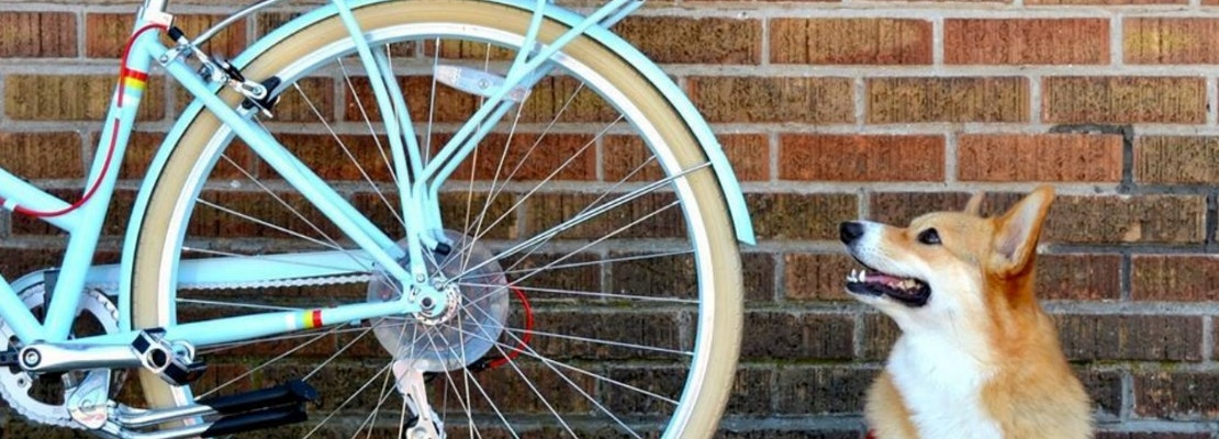 Event Spotlight: 'Raise The Woof' At PUBLIC Bikes This Saturday