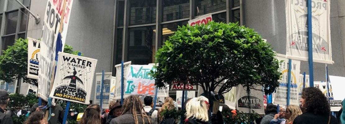 Hot Off The Tipline: Plant Vandal & Mail Thief Strike Again, San Franciscans Protest NADPL, More