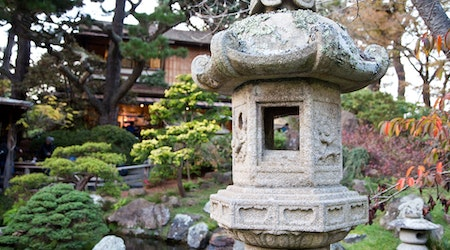 Finding History And Tranquility At The Japanese Tea Garden