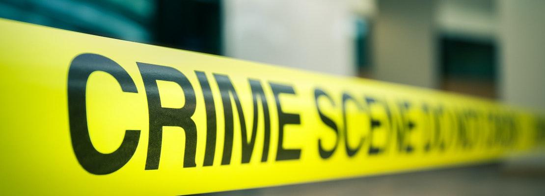 Bellingham week in crime: Assault and theft drop