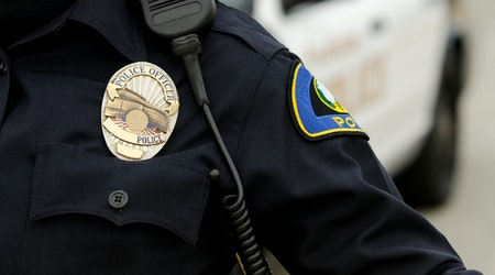 Mountain View week in crime: Burglary rises, vandalism drops