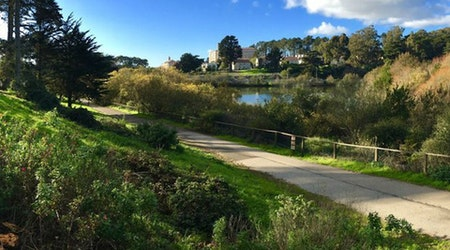 From Glen Canyon To Mountain Lake, SF To See 4 New Park Openings