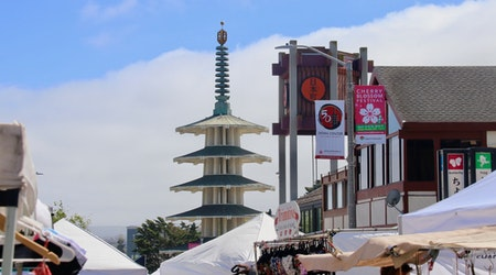 Scenes from the 2019 Cherry Blossom Festival in Japantown