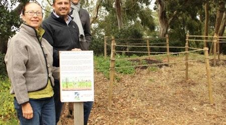 City Opens Carbon Sequestration Test Site In Buena Vista Park