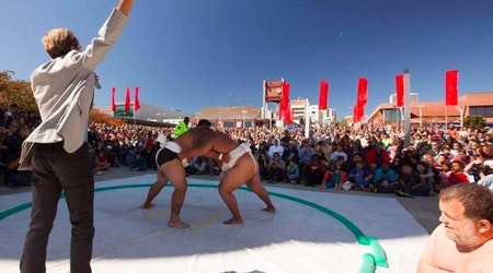 ABC7 Weekend: Ocean Beach Cleanup, Brews On The Bay & Sumo Champions Exhibition