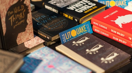 With 800+ Authors, 'Litquake' Turns 18 With 9-Day Festival