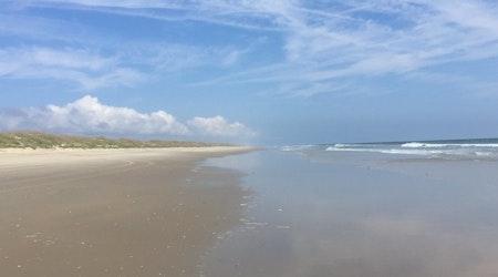 Top Virginia Beach news: Sea lice invade beaches; body believed to be teacher's found off False Cape
