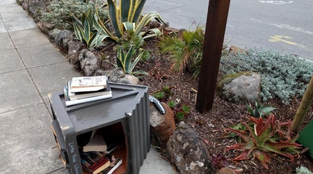 For A 3rd Time, Vandals Trash Forest Hill's 'Little Free Library'
