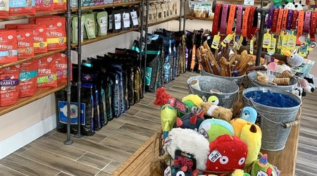 New Harbour Island's Pawtology Grooming & Spa, offer toys, treats and stress relief for pets