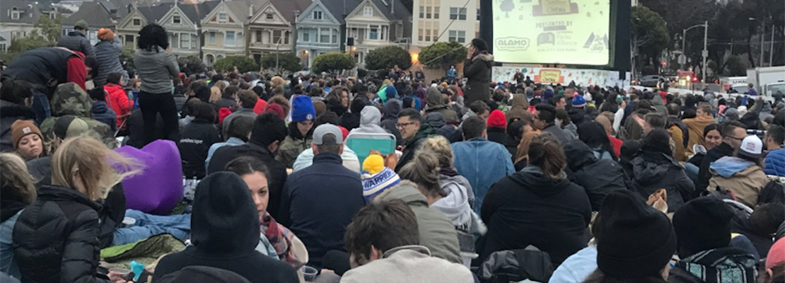 SF weekend: Sundown Cinema in Alamo Square, baby penguin march at the Zoo, kitten adoptions, more