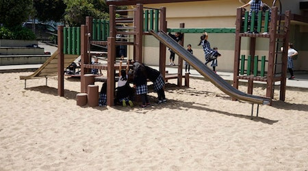 District 11 Ranked Last in Parks Maintenance Report