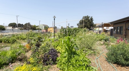 Take Root: OMCA Exhibit Spotlights City's Agricultural Community
