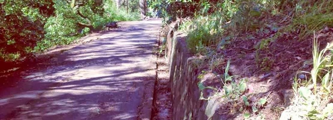 The Secret Tombstones of Buena Vista Park