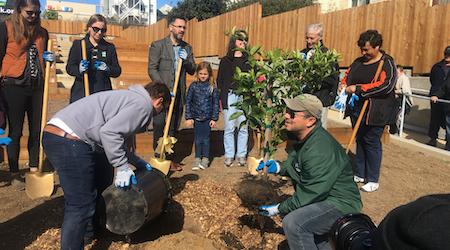 New Buds: Cayuga Terrace Edible Garden Debuts
