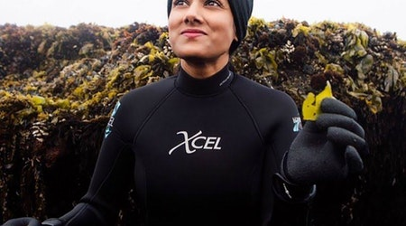 A New Leaf: Local Seaweed Skin Care Maker Revamps Packaging