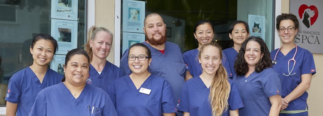 SF SPCA Launches Vet Assistant Apprenticeship Program
