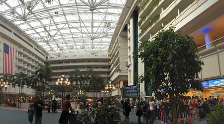 Top Orlando news: MCO has longest wait times at customs; man grabs child after offering cash; more