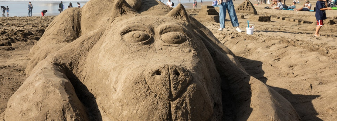 Scenes from the 37th Leap Sandcastle Classic