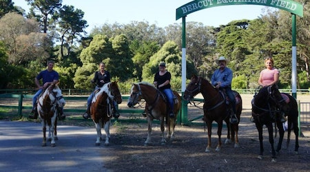After 18 years, Golden Gate Park's horse program rides again