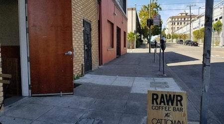 Armed Suspect Robs 'Rawr Coffee Bar'