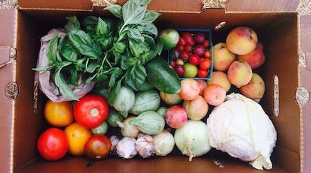 Bayview farmers market returns on Saturday