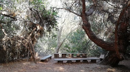 Long Beach's top 4 parks to visit now
