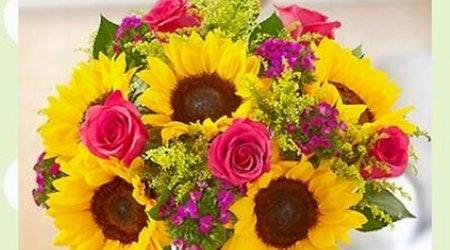 Colorado Springs' top 5 florists, ranked