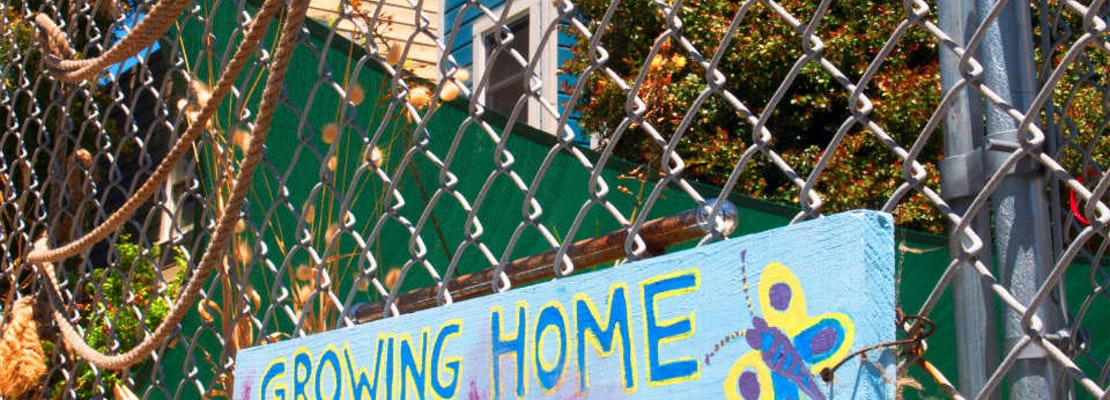 Eviction Notice Served For Hayes Valley Community Garden