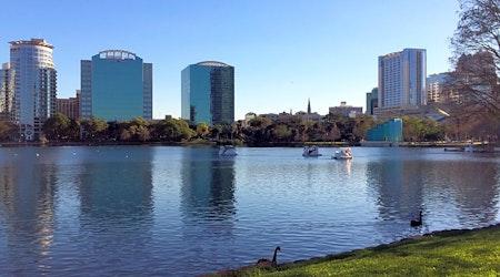 Top Orlando news: Burns wins District 6 runoff; small shark knocks local boy off surfboard; more