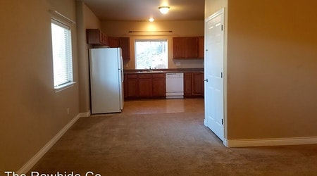 What apartments will $1,000 rent you in northeast Colorado Springs this month?