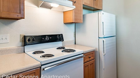 What apartments will $1,200 rent you in Northeast Fresno this month?