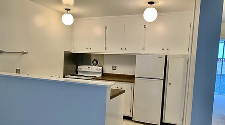 What apartments will $3,500 rent you in Nob Hill, right now?