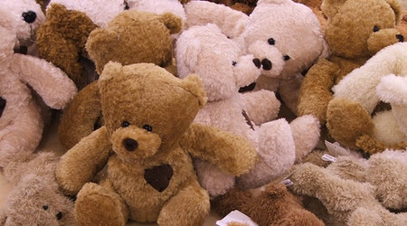 SF weekend: Teddy Bear Clinic; Russian food, music festival; swing dance & bowling party, more