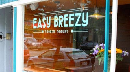 Easy Breezy Frozen Yogurt En Route To The Castro