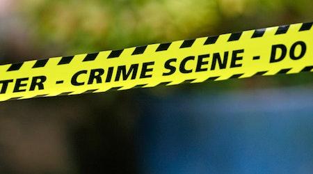 Castro Recent Crime Roundup